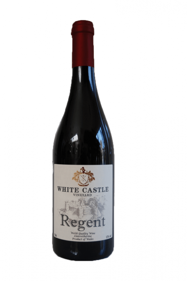 White Castle Vineyard Regent 2017 bottle shot