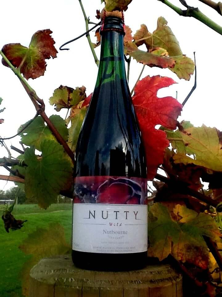 Nutbourne Vineyard Nutty Wild NV English Sparkling Wine